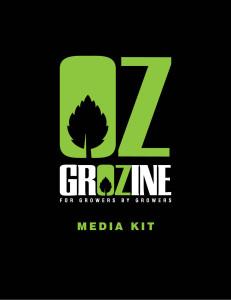 BRAND-media-kit-COVER