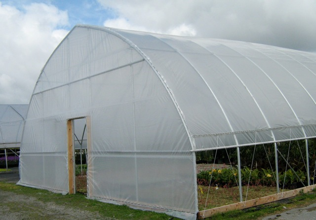 freestanding gothic arch hydroponic greenhouse