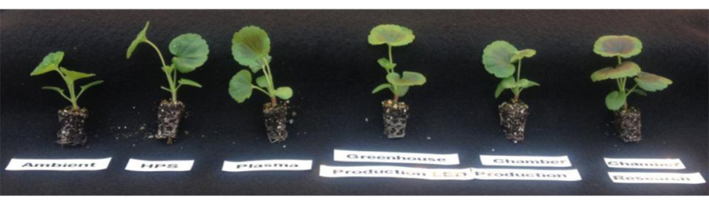 Chameleon-Grow-Systems-Agriculture-Aquaculture-Algaculture.jpg