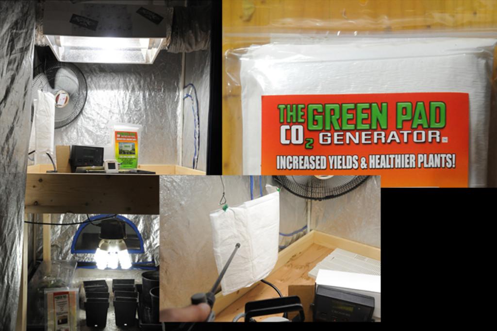 greenpad co2 reviews hydroponics articles
