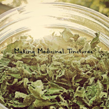 Making Medicinal Tinctures