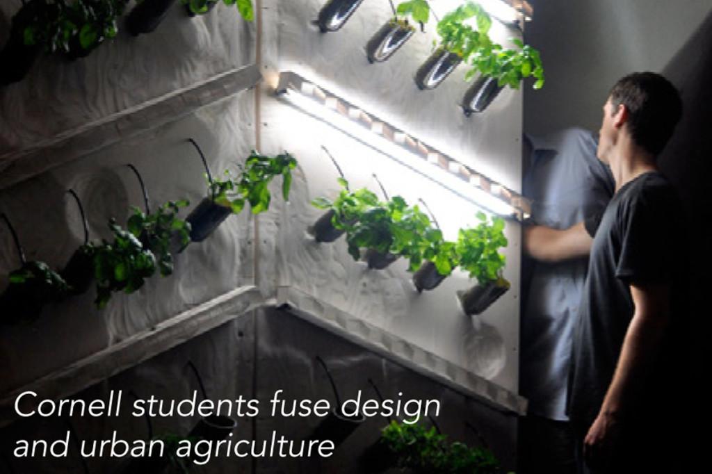 modern hydroponics farming corenll university