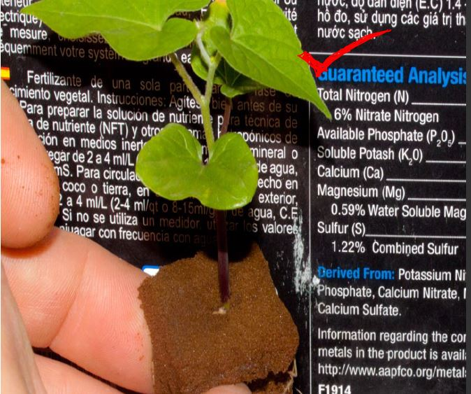 understanding fertilizer materials hydroponics ingredients
