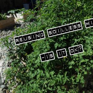 Homebox modular review grozinegrozine for Soil less farming