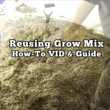 Reusing Grow Mix