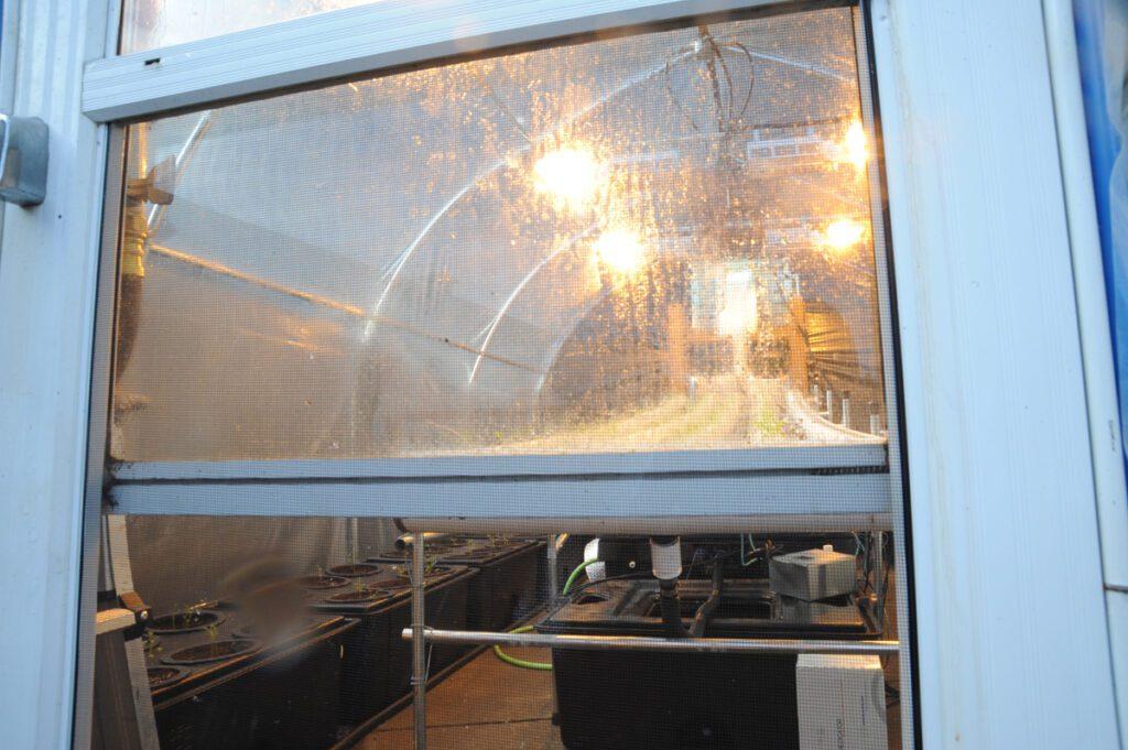 greenhouse door vent