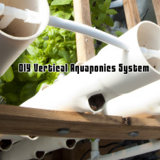 DIY Vertical Aquaponics System