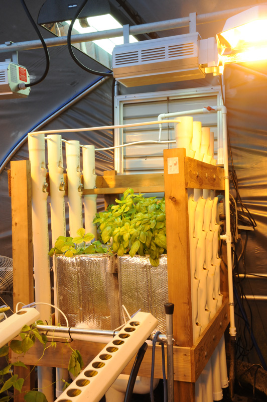 lighting vertical aquaponics