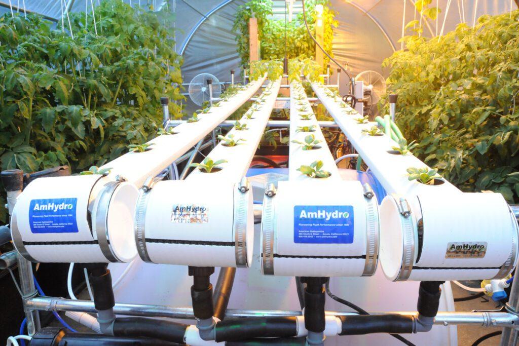 fractal water greenhouse hydroponics