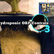 Hydroponic ORP Controls