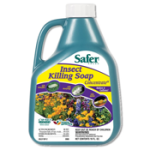 safer-insect-killing-soap-concentrate-16-oz