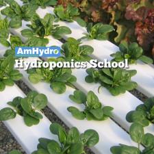Hydroponics School