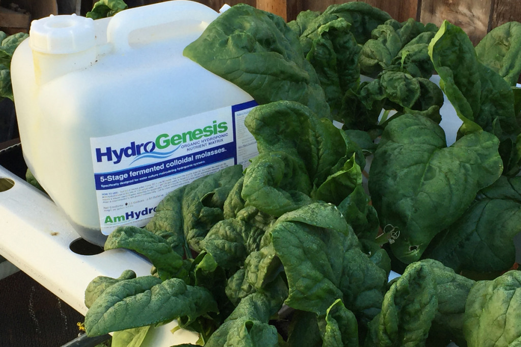 AmHydro Hydro Genesis Organic Fertilizer bottle