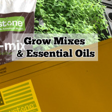 Grow Mixes Increase Essential Oils