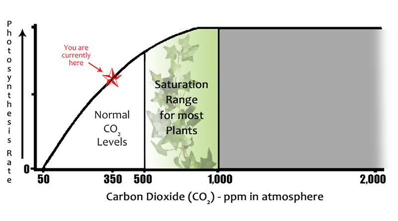 co2_graph_grozine-web