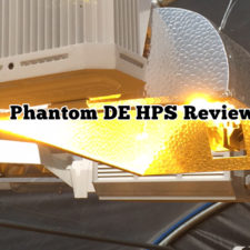 Phantom DE HPS Review