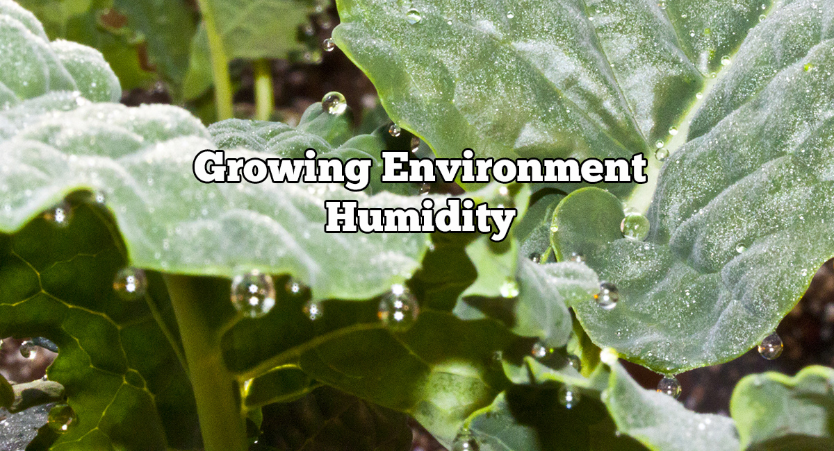 & Growing Environment Humidity - GROZINEGROZINE