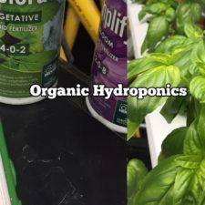 Organic Hydroponics