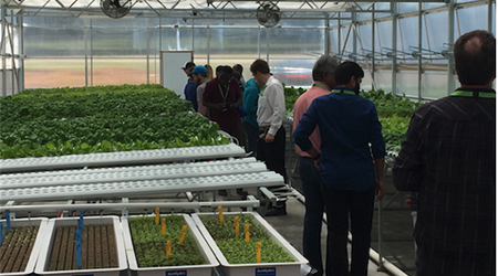 amhydro greenhouse growers courses