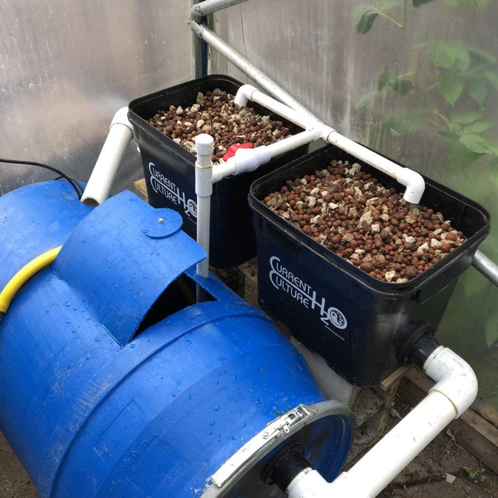 aquaponics system media