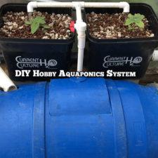 DIY Hobby Aquaponics System