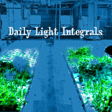 Daily Light Integral for Grow Lighting