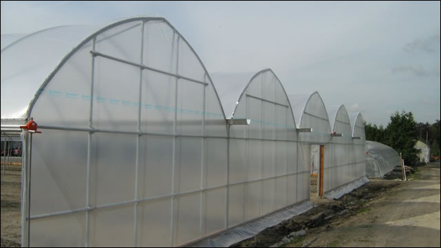 gutter connect steel hydroponics greenhouse