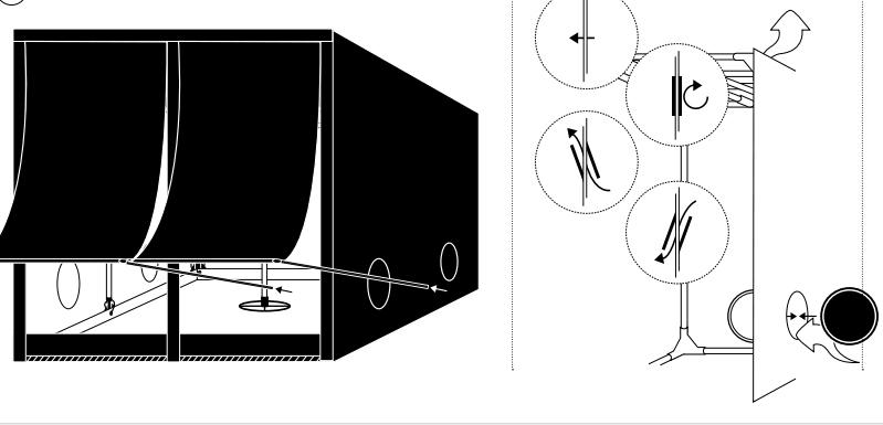 homebox evolution diagram