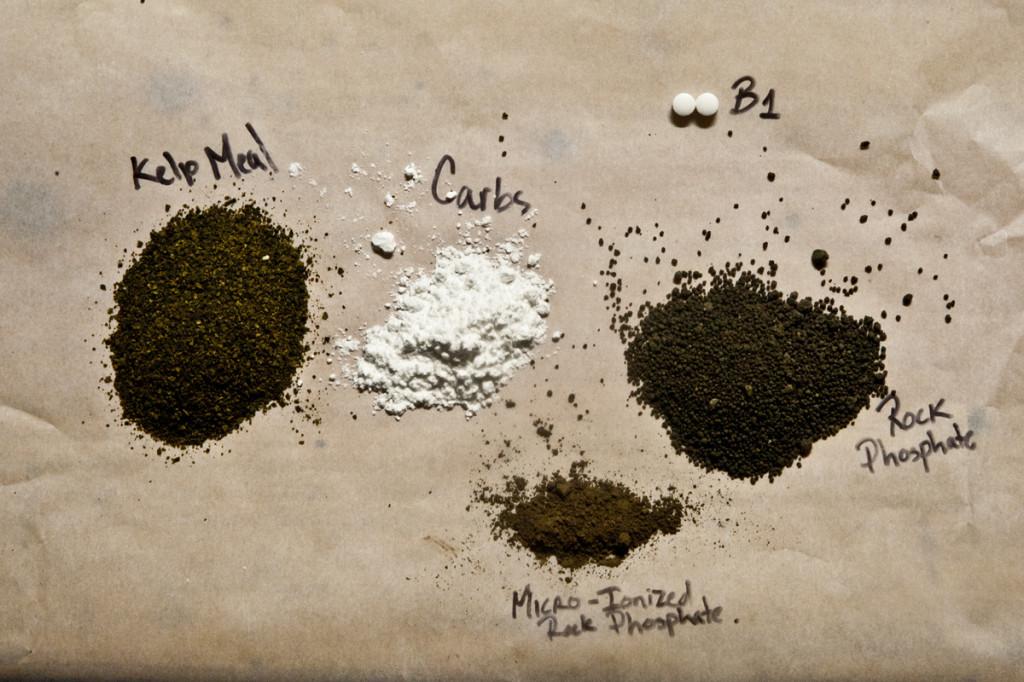 organic hydroponics compost tea ingedients