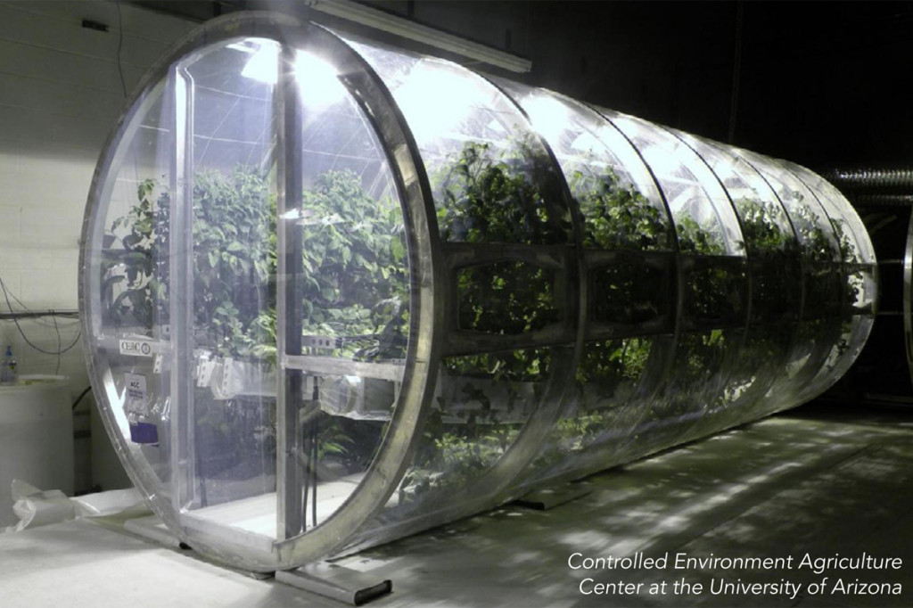modern hydroponics farming university arizona