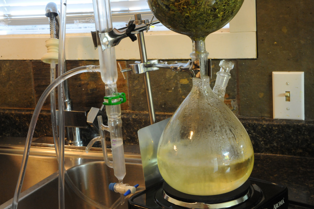 2L-direct-steam-distillation-setup-extraction