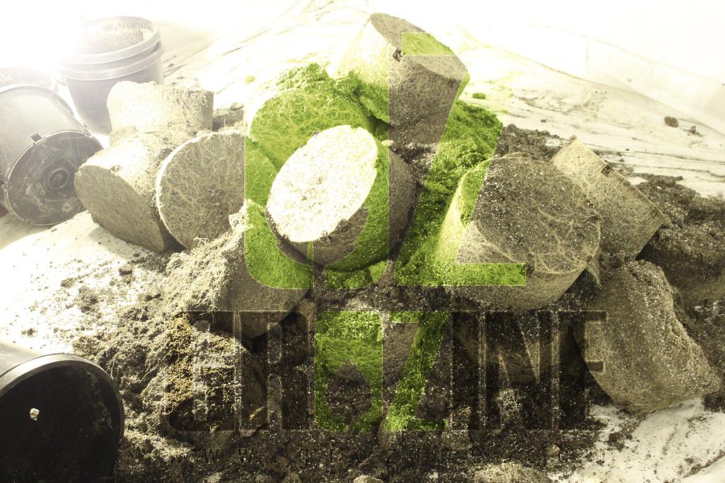 soilless root balls