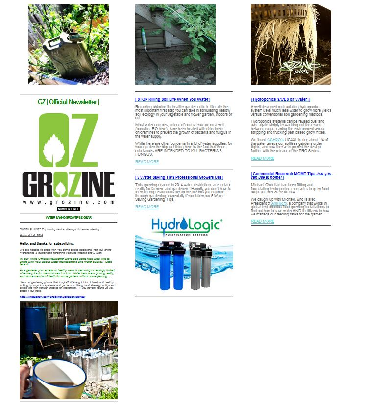 grozine newsletter body
