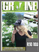 Read Grozine Digital issue
