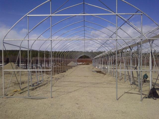 greenhouse building steel