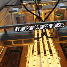 Hydroponics Greenhouses