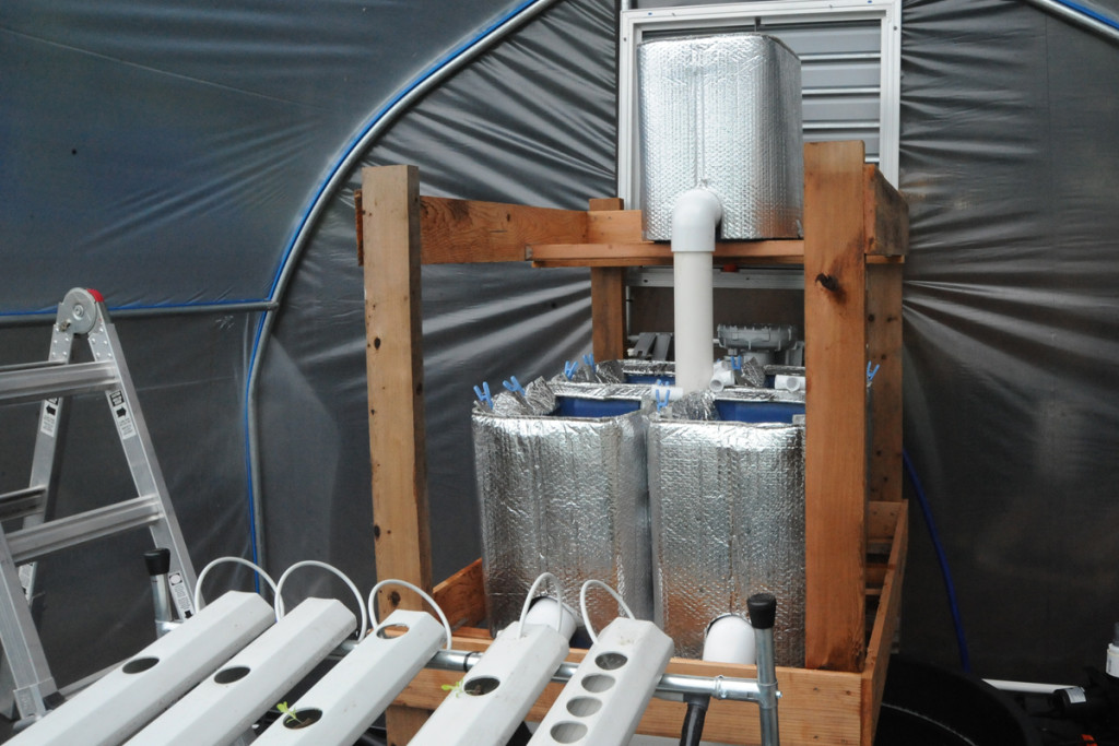 tiered aquaponics system