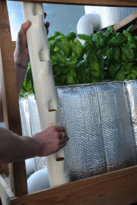 building vertical aquaponics