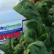 AmHydro HydroGenesis Organic Fertilizer
