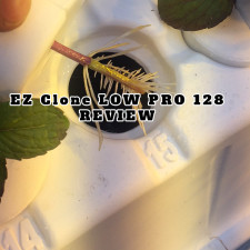 EZ Clone Low Pro NEW MODEL Review