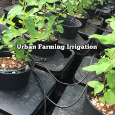 Urban Farming Irrigation