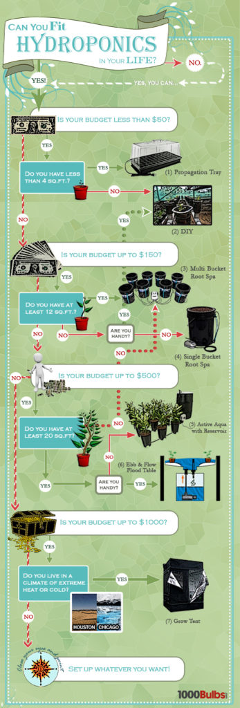 how-much-hydro-infographic-620px-A