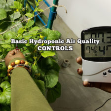 Basic Hydroponics Air Quality Controls