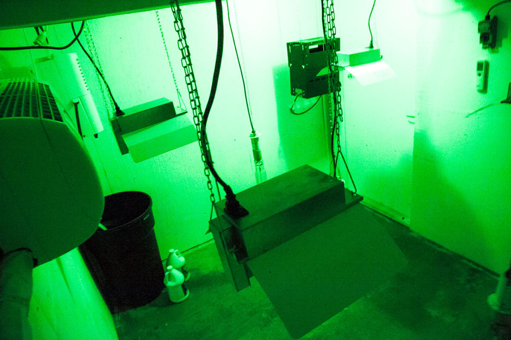 building-sealed-grow-rooms-cea