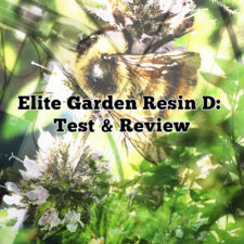 Elite Resin D Test Review