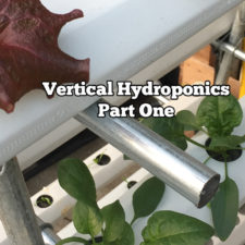 Vertical Hydroponics, Part One