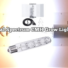 Dual Spectrum CMH Grow Lights