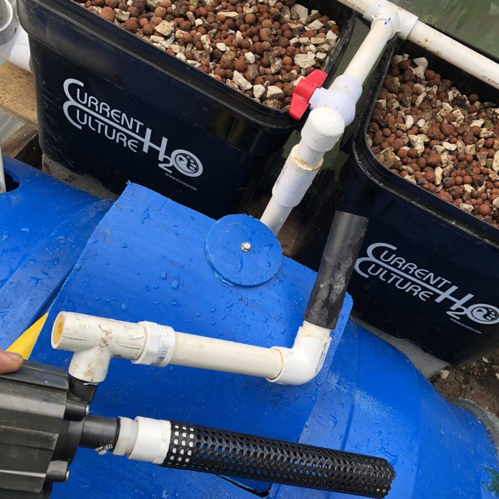 aquaponics system pump filter