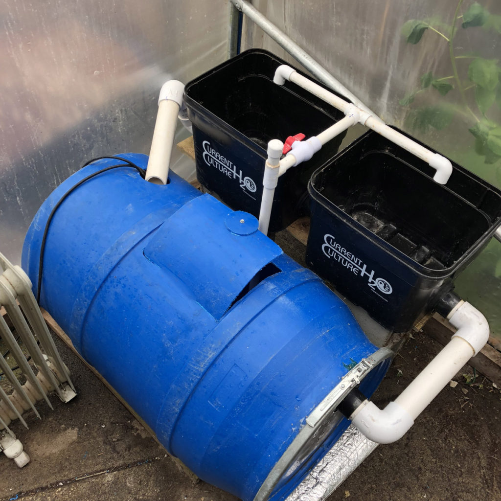 diy hobby aquaponics system side