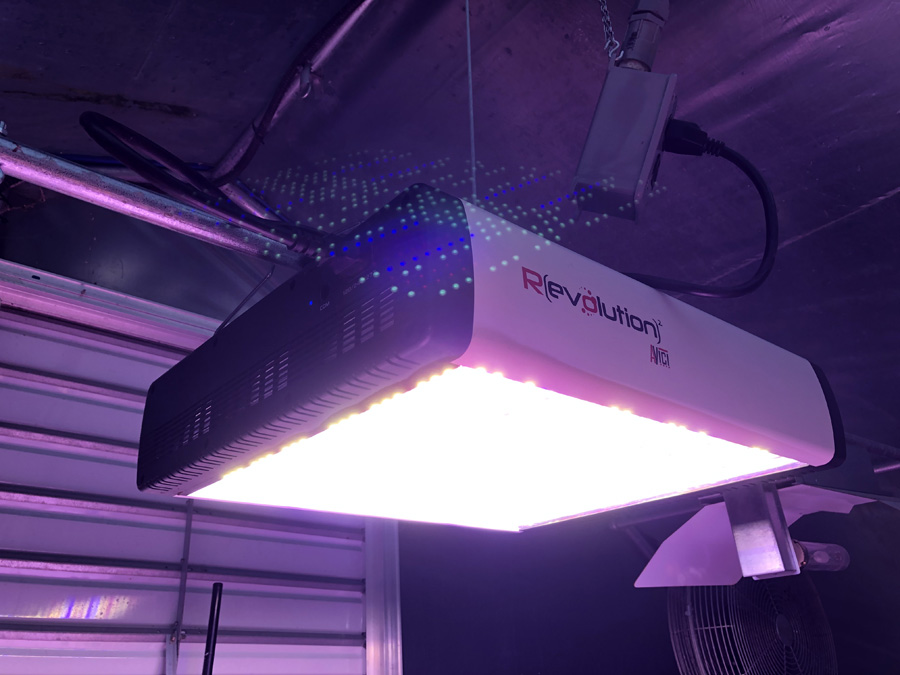 hps-replacement-led-grow-light